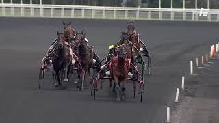 Vidéo de la course PMU PRIX DE LUYNES