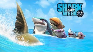 New Map Contest The Bay - Hungry Shark World Gameplay