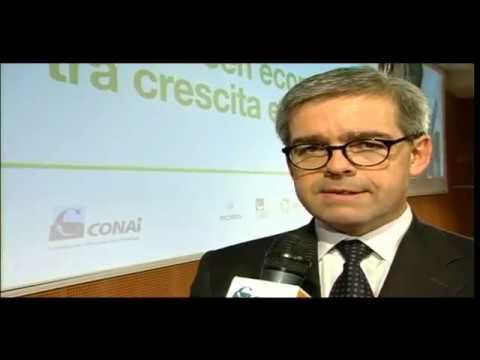 Conai_ Green economy  tra crescita e sostenibilità_Milano 11/01/2013