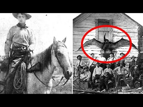 5 Unsolved Mysteries That Cannot Be Explained #2