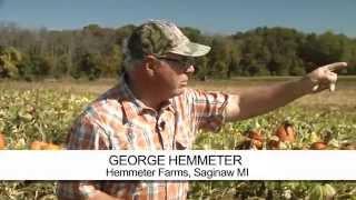 Michigan farmer George Hemmeter's pumpkin farm