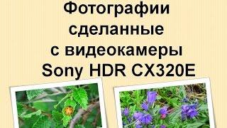 Фотографии сделанные с видеокамеры Sony HDR CX320E /✿Photos taken with the camcorder Sony HDR CX320E