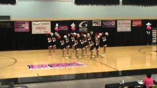 State Dance Competition 2013 (Cedar Falls Pom Routine)