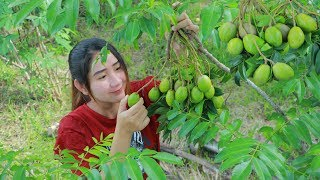 Yummy June Plum Cooking Fish - Picking June Plum - Cooking With Sros