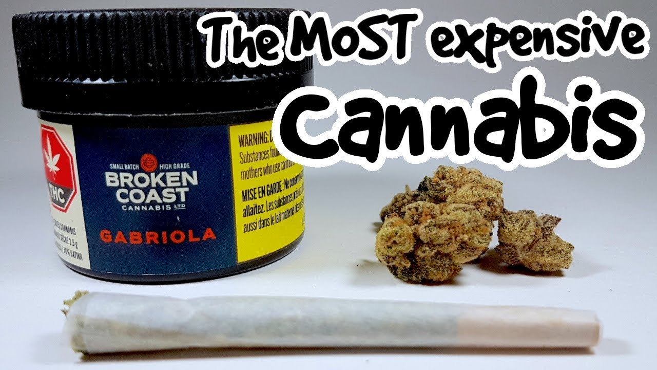 I Smoke The Most Expensive Weed Available!