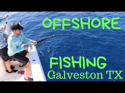 OFFSHORE Fishing Galveston Texas! (Amberjack, Mahi, King Fish)