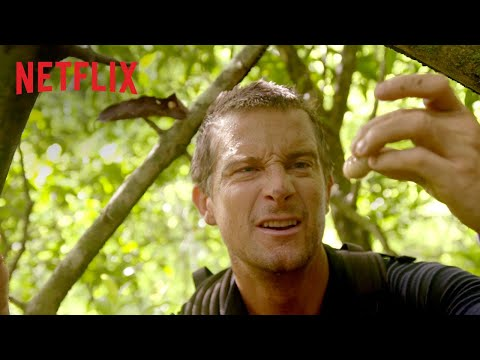 Série INTERACTIVE : You Vs. Wild | Bande-annonce VF | Netflix France