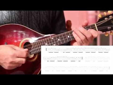Irish mandolin lessons. Chicago Reel