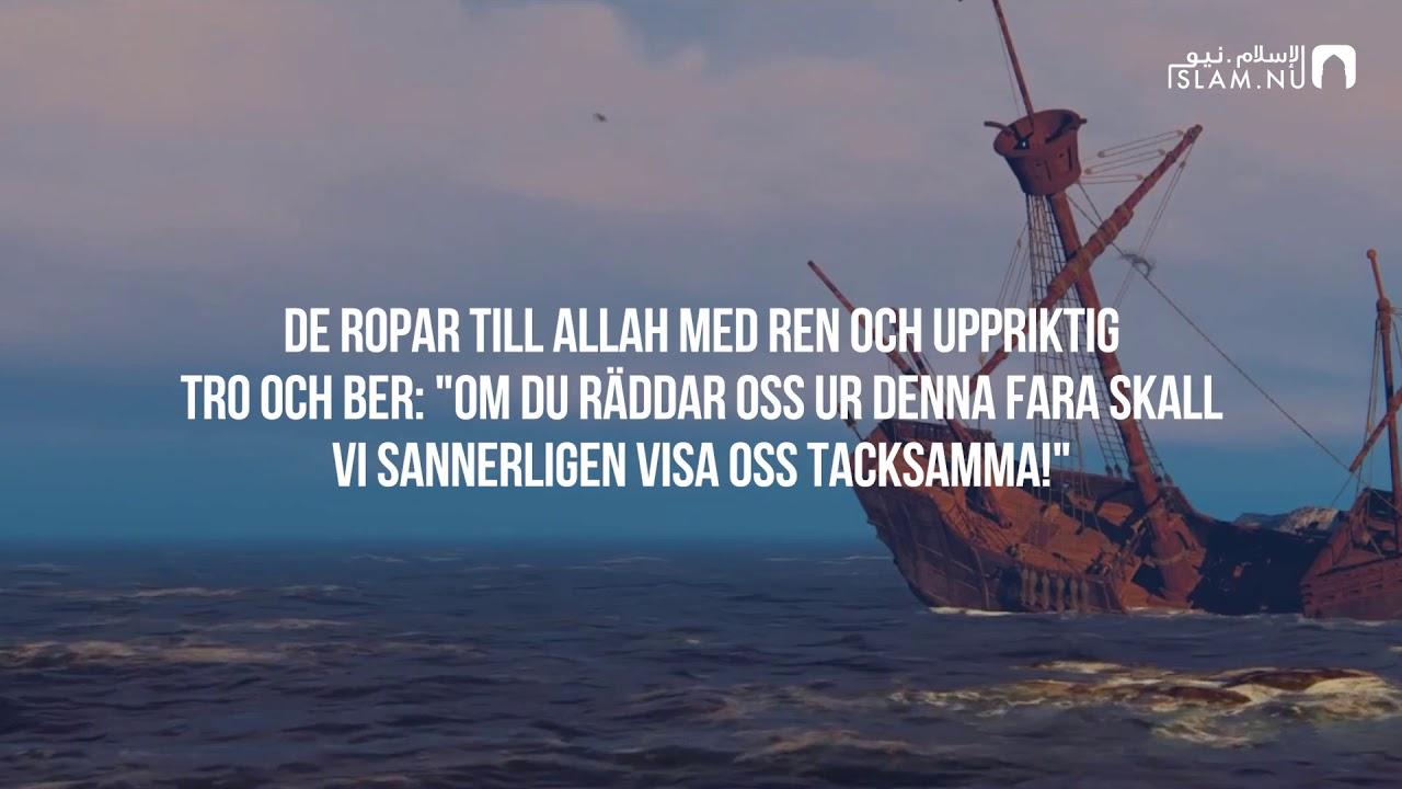 Surah Yunus (22-25) - Ameer Shamim