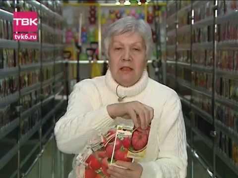 Советы тети Тани. Сорта низкорослых томатов.