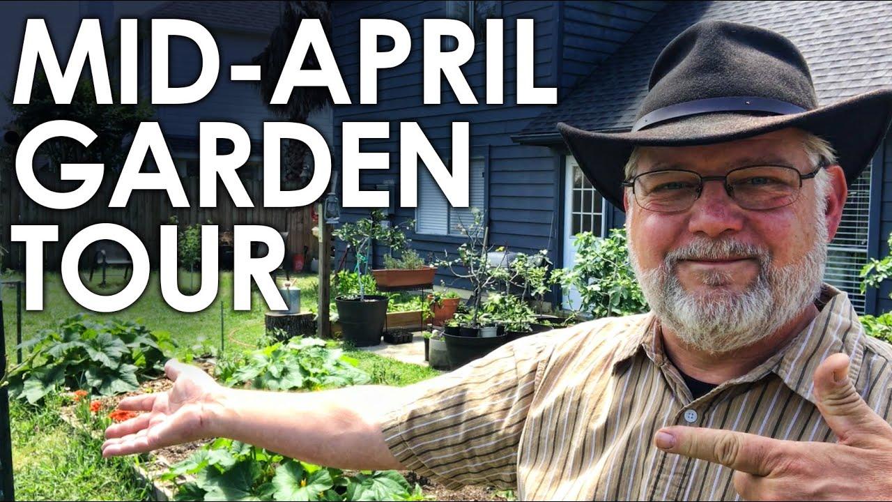Mid-April Garden Tour 2021 || Black Gumbo