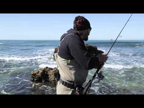 Italian fishing tv mondo artificiale iii serie nomura for Fisher fish chicken indianapolis in
