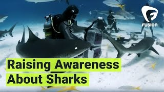 How to Swim with Sharks featuring Madison Stewart