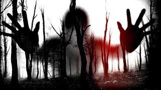 """Секретный лес """"+18"""""""
