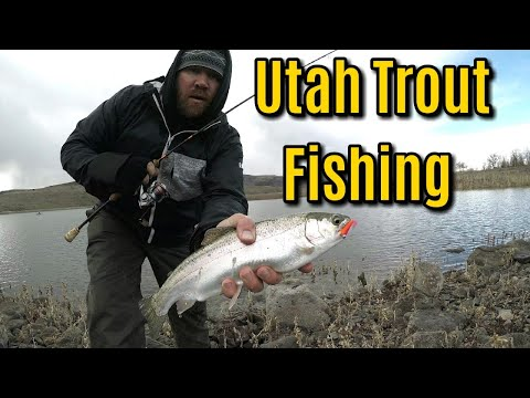 Trophy Trout Fishing In Utah | Minersville Reservoir & Otter Creek State Park
