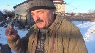 видео Хранение черенков и саженцев
