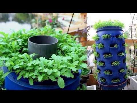 Beautiful Vegetable Garden Ideas .!