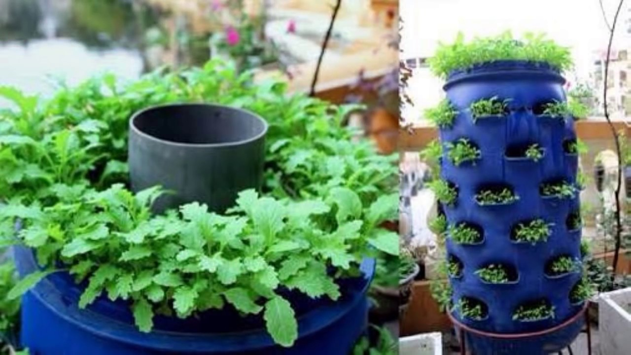 Beautiful Vegetable Garden Ideas Youtube