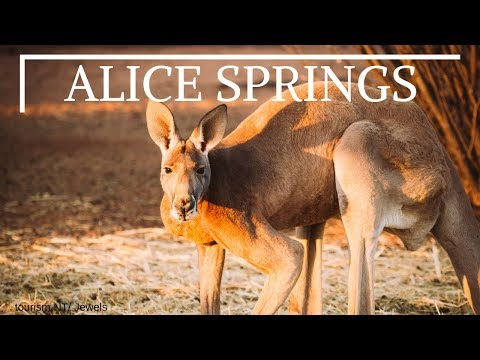 Alice Springs Tourism : Top 10 Places to Visit