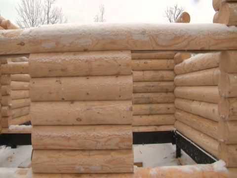 Строительство бани из бревна. С чего начать? Сборка сруба.#деревянныедомаМогута