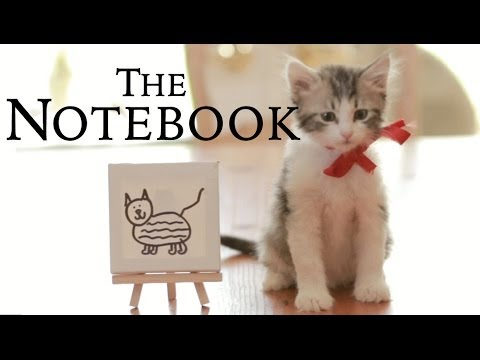 The Notebook - Cat Parody