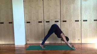 Jaki Nett Teaches Adho Mukha Svanasana (Downward Facing Dog) - Iyengar Yoga