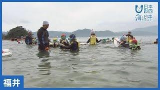 #9 国立若狭湾青少年自然の家「夏キッズ」|海と日本PROJECT in ふくい