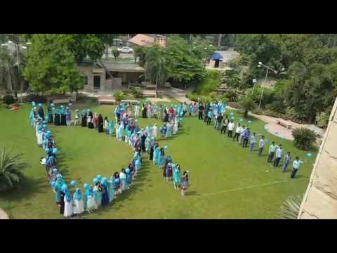world physiotherapist day celebration
