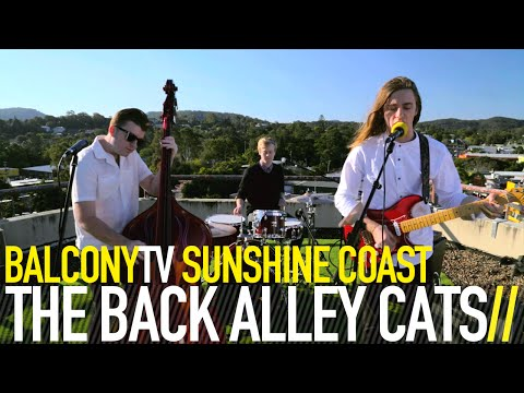 THE BACK ALLEY CATS - JUKEBOX JUNKIE (BalconyTV)