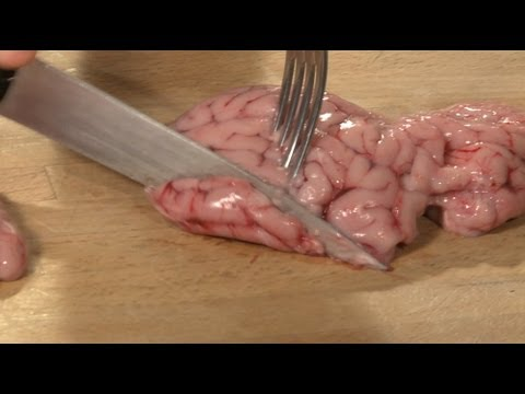 Raw Brain Taste Test