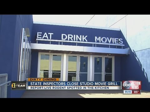 Dirty Dining: Studio Movie Grill Temporarily Closes For Live Rodent Running In Kitchen & Droppings