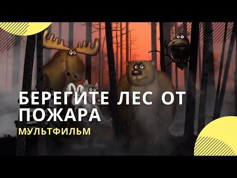 Мультфильм берегите лес от пожара