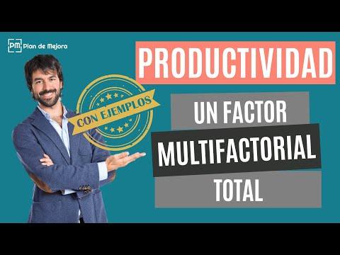 Medición de la Productividad: Un factor, multifactorial y total con ejemplos