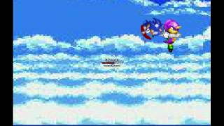 Team sonic vs Team chaotix