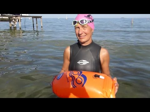 Svøm med en havtaske