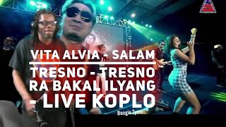 Download lagu Vita Alvia - Salam Tresno - Tresno Ra Bakal Ilyang - Live Koplo  American Reaction U.S.