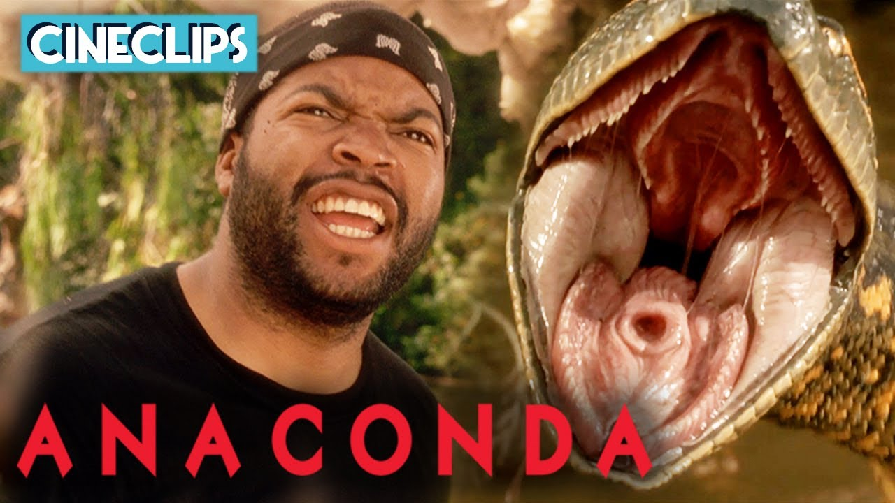 Download Ice Cube's Encounter With Anaconda | Anaconda | CineClips