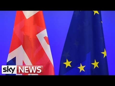 EU Referendum: How Are The Campaigns Coming Along?