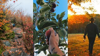 Apple Picking, Hiking & Autumn Sunsets