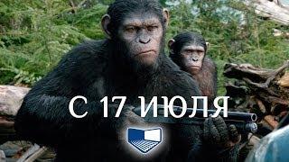 «Планета обезьян: Революция» — фильм в СИНЕМА ПАРК