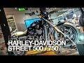 NOUVEAU 2014 | EICMA | HARLEY-DAVIDSON STREET 750 & 500 2014