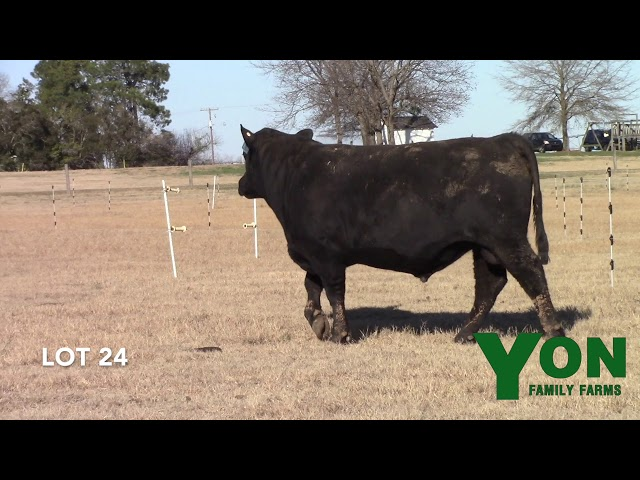 Yon Family Farms Lot 24