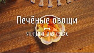 Блюдо для собак: печёные овощи [ Рецепты от Рецептор ]