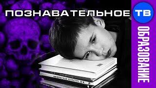 Школа: система массового УНИЧТОЖЕНИЯ и ПОРАБОЩЕНИЯ (Познавательное ТВ, Владимир Базарный)