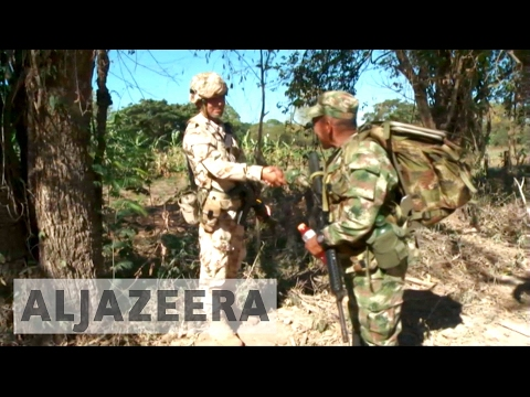 Colombia: FARC rebels to disarm at transition zones