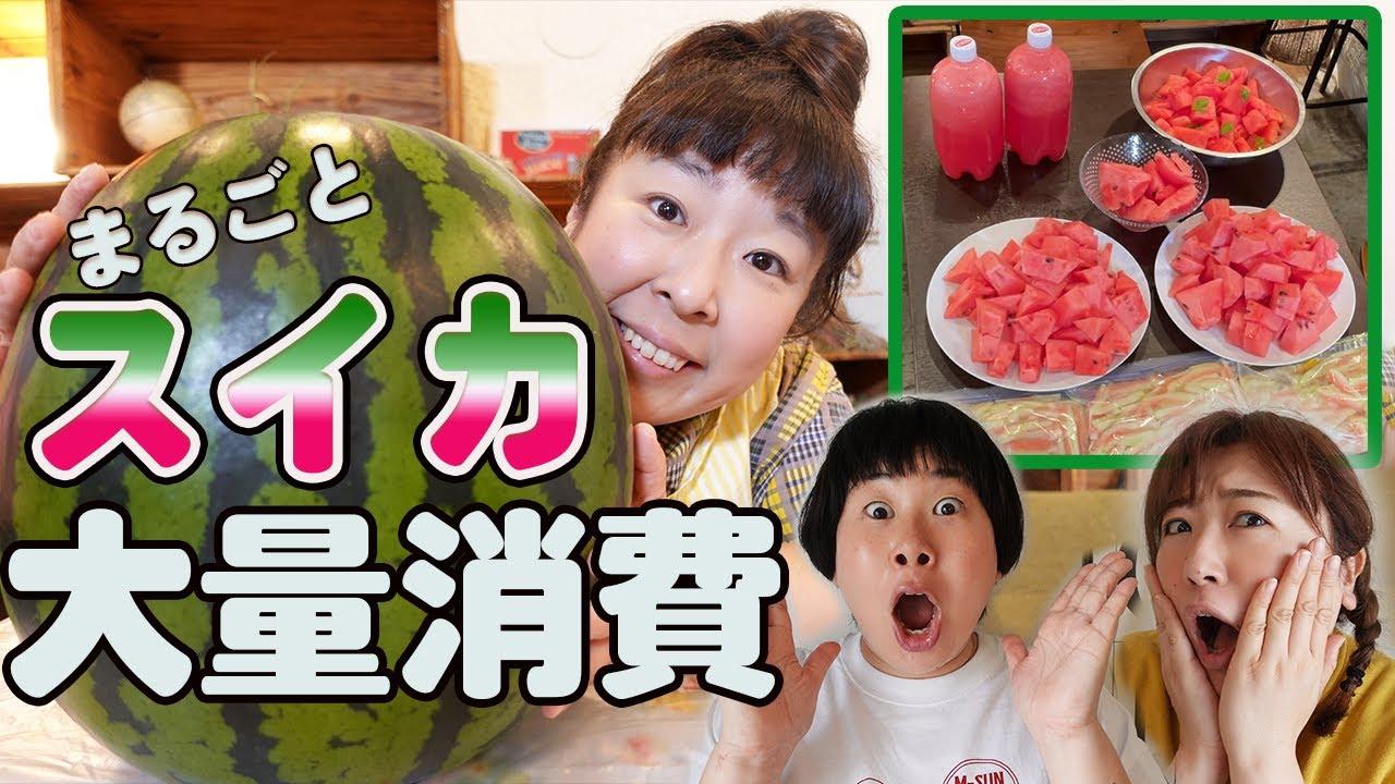 【巨大スイカ大量消費】是非試してください!スイカを丸ごと使い切り!簡単レシピ/夏野菜/スイカジュース/スイカのマリネ/スイカの皮の漬物