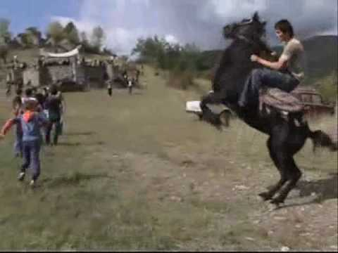 pankisi!!! the best horse ARGUUN... wmv