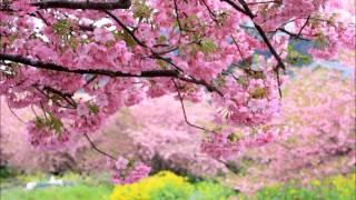 うしろ髪ひかれ隊の「ほらね、春が来た」を3人で歌いました。 作詞:秋...
