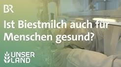 Biestmilch: Ist Kolostrum von Kühen auch für Menschen gesund? | Unser Land | BR Fernsehen