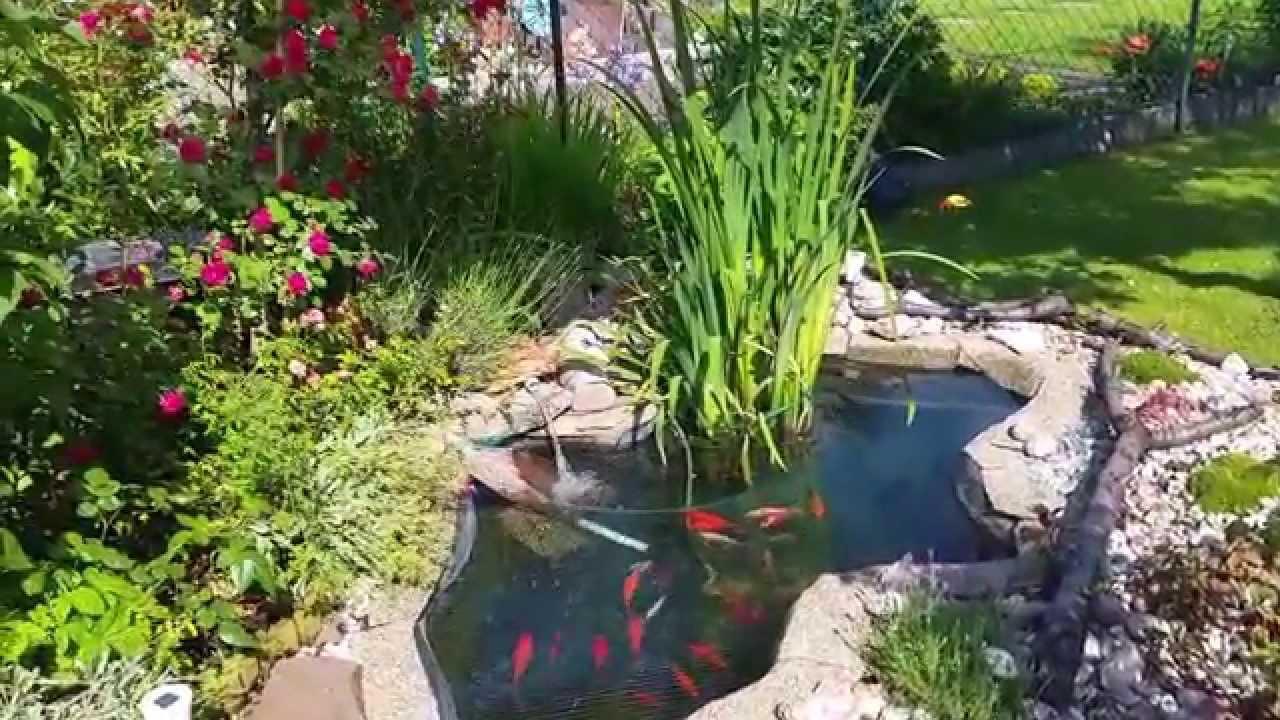 Wie halte ich meinen fischteich sauber youtube for Fischteich wasser reinigen